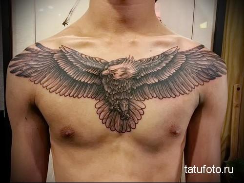 тату орел на груди 1