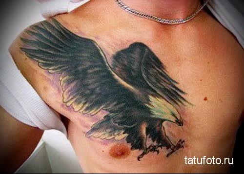 тату орел на груди 3