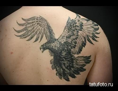 тату орла на спине 2