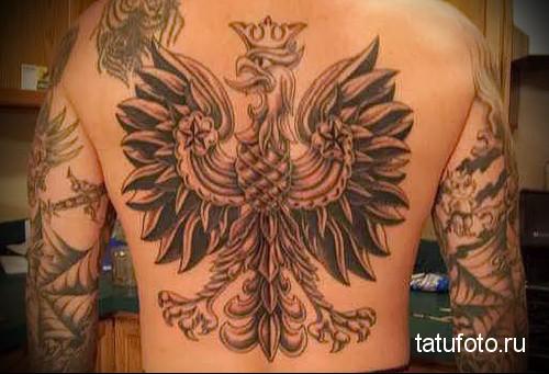 тату орла на спине 3