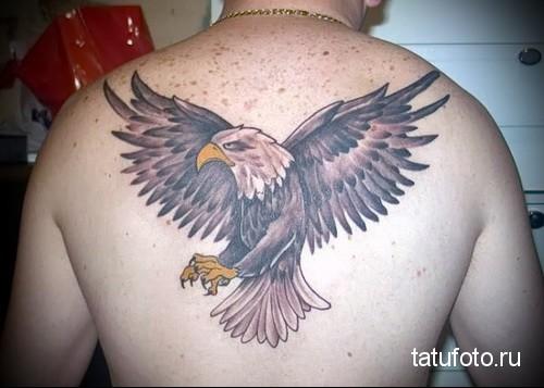 тату орла на спине 4