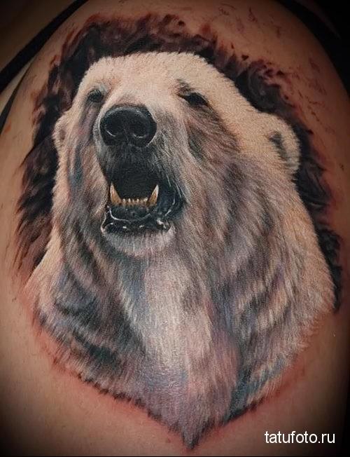 тату оскал медведя - белый медведь