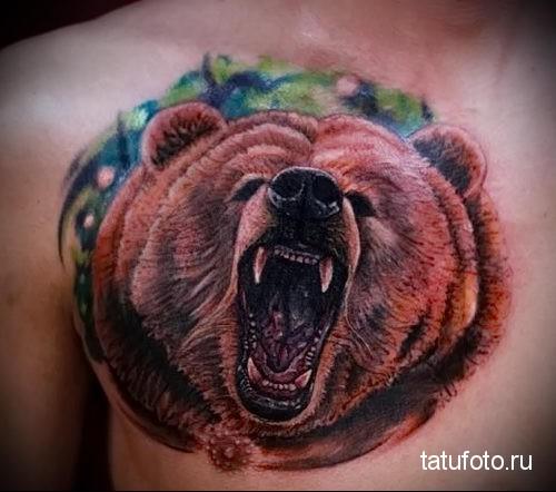 тату оскал медведя на правой груди для мужчины