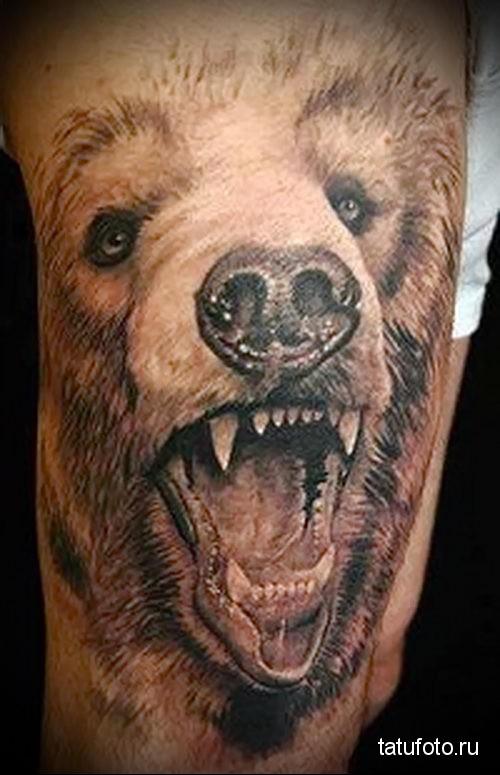 тату оскал медведя на часть руки