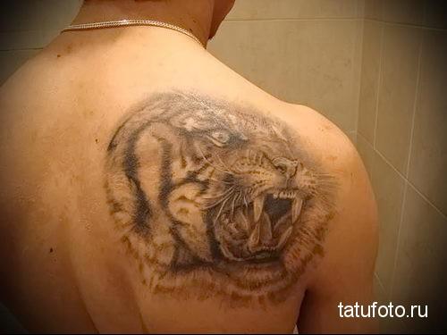 тату оскал тигра на спине для мужчины