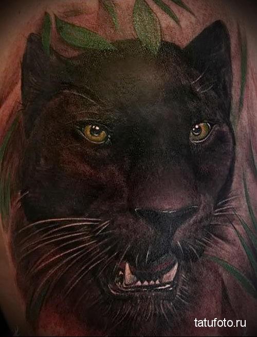 тату пантера - реалистичная татуировка