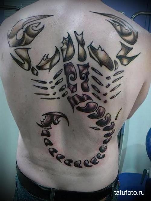 тату скорпион на спине 3
