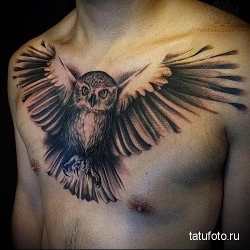 тату сова для мужчин 1
