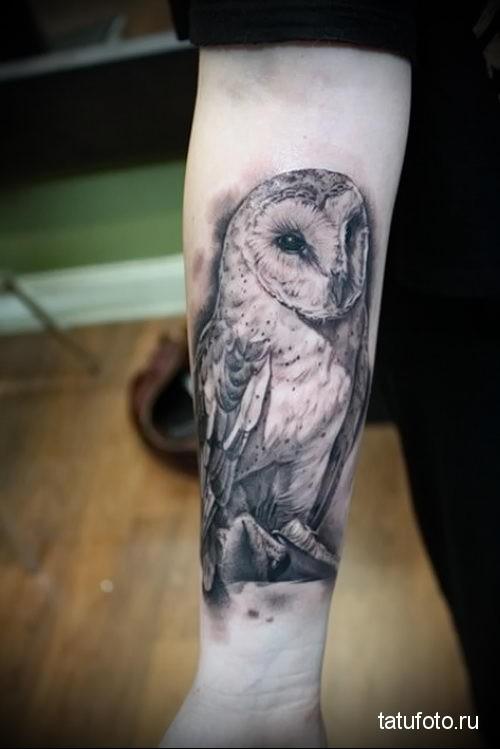тату сова на руке 4