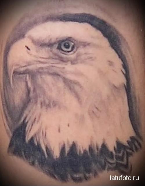 Eagle head tattoo 1