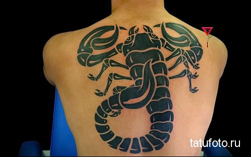 Scorpion tattoo on the back 3
