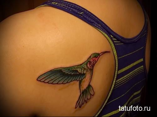 hummingbird tattoo on shoulder blade 1