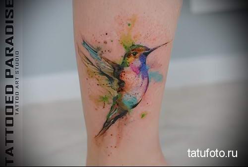hummingbird tattoo watercolor 4