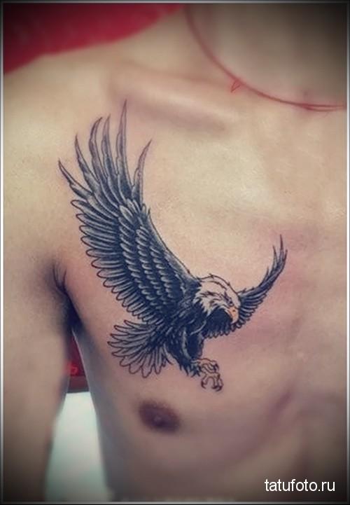male eagle tattoo 1