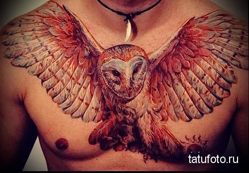 owl tattoo on chest 2