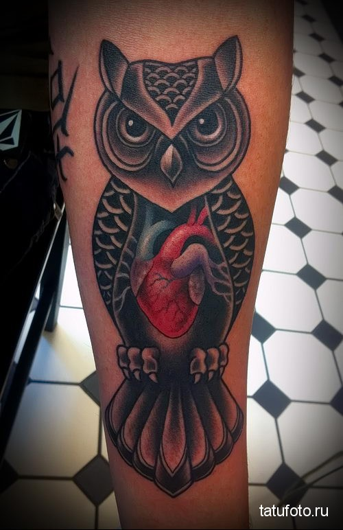 Тату сова с сердцем в груди - фото