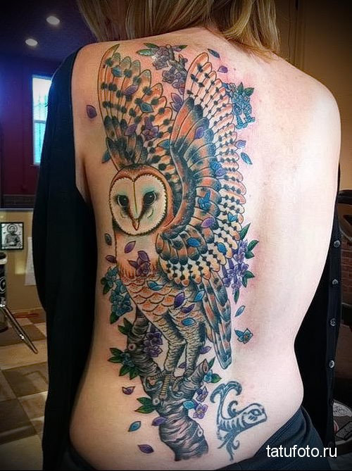 owl tattoo on her back 2