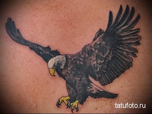 tattoo eagle in flight 2