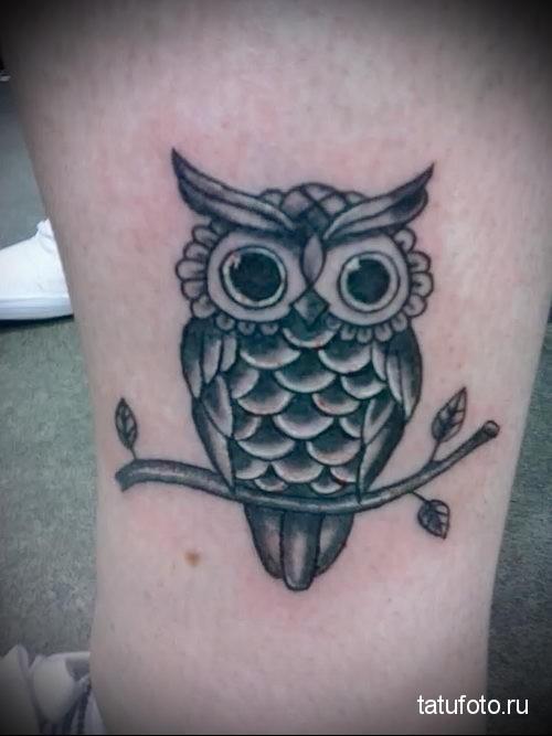 Татуировка с совой которая сидит на ветке с парой листков