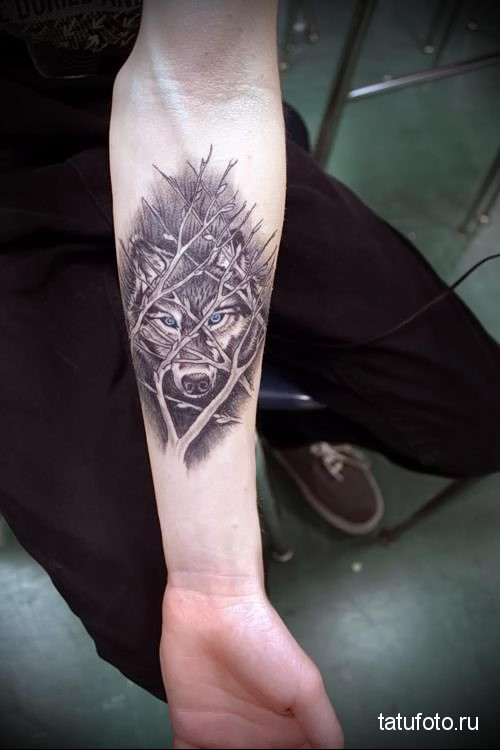 wolf tattoo on the forearm 1