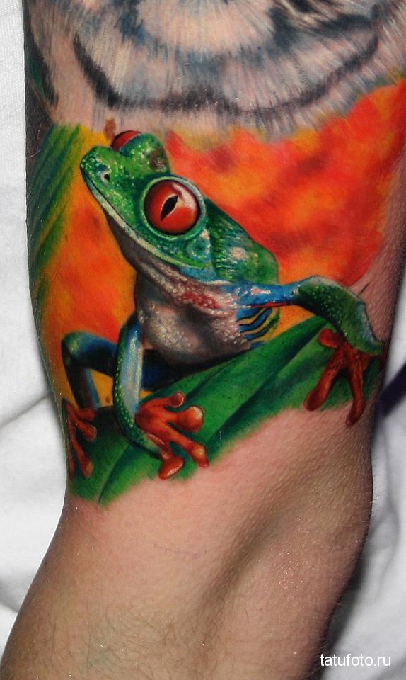 Тату лягушка - селеная с яркими глазами на оранжевом фоне