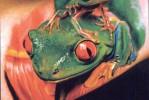 Тату лягушка с лягушонком на спине