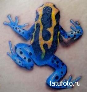 Тату лягушка - ядовитая окраска