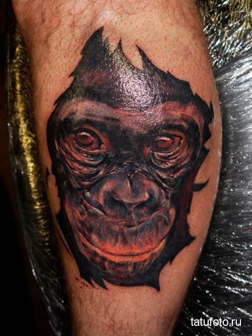 Тату обезьяна - морда