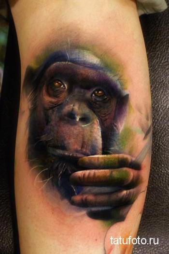 Тату обезьяна - реалистичный рисунок