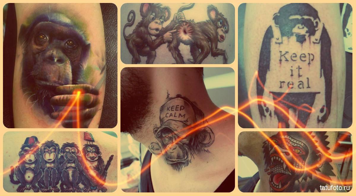 Тату обезьяна фото - готовые работы лучших мастеров тату