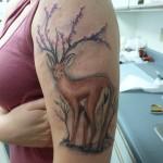 Значение татуировки Пантера или что означает тату Пантера? 12