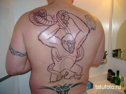 Тату обезьяна борется со змеей - рисунок на всю спину