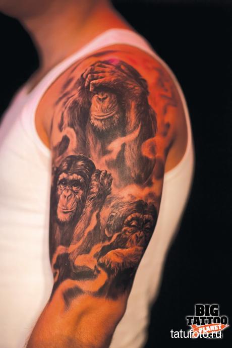 Тату обезьяна на плече мужчины
