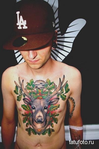 Тату олень на груди у мужчины - цветной вариант
