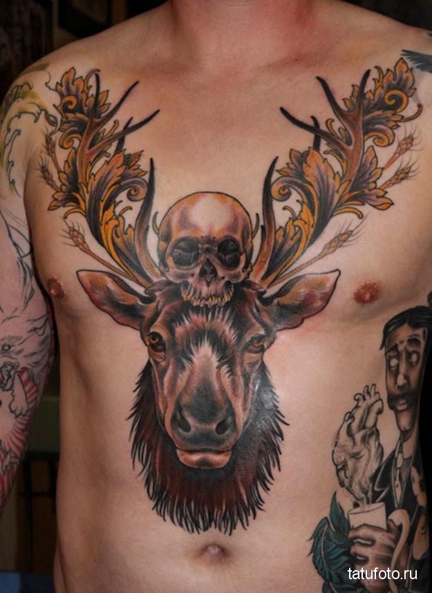 Тату олень с большими рогами и череп на грудь парню