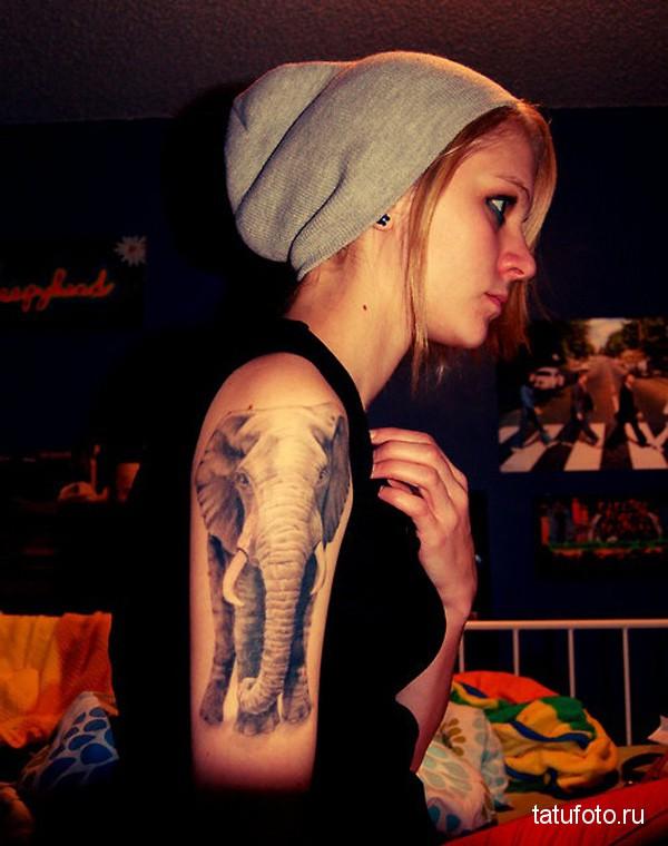 Тату слона на руку и плече девушки эмо