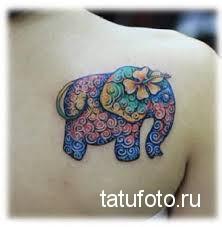 Тату слона яркими цветами на лопатку для девушки