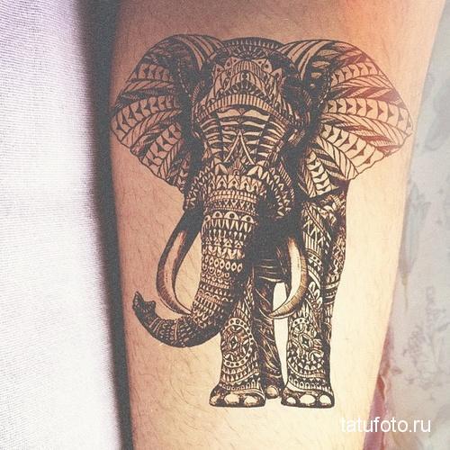 Тату слон в индийских узорах - индийский слон