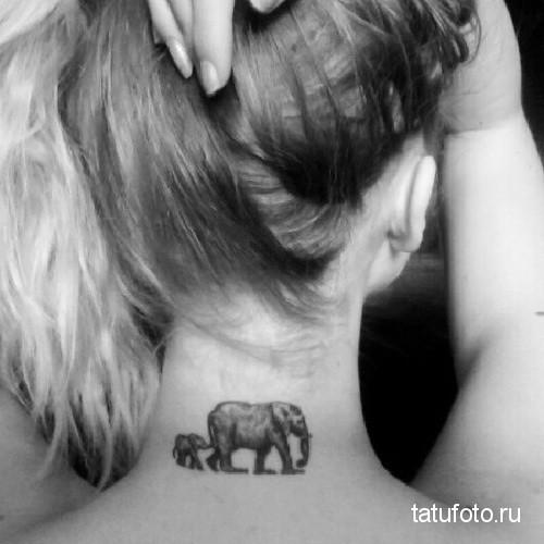 Тату слон и слоненок на шее у девушки