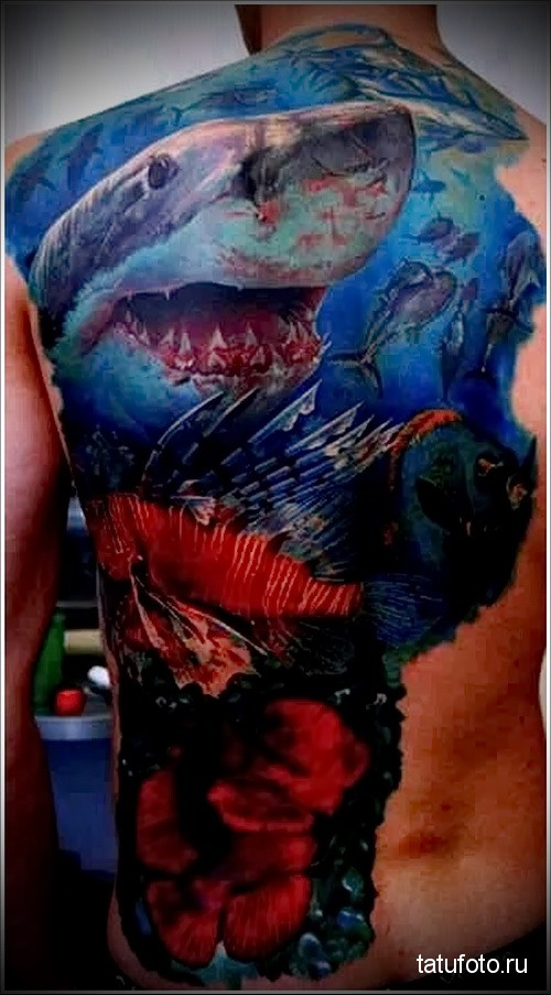 белая акула тату 6