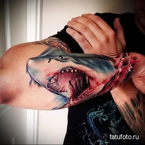 тату акула на руке 1