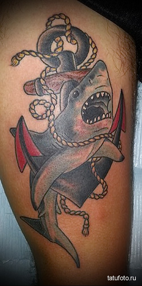 Shark and anchor tattoo 7