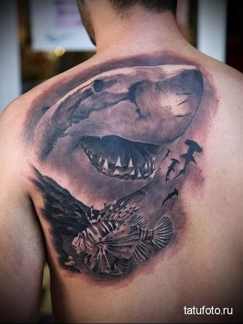 shark tattoo on his shoulder 2
