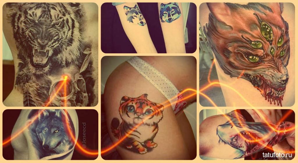 Тату хищники - фото - готовые работы от лучших мастеров тату
