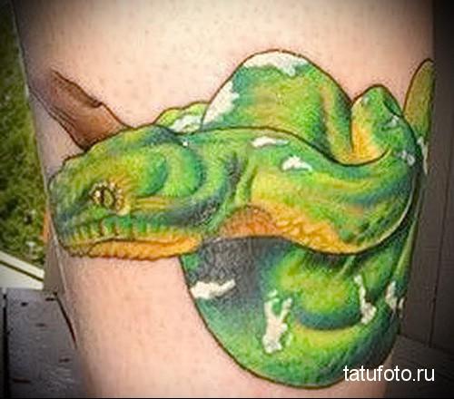 Пресмыкающиеся в татуировке 20