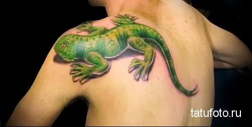 Пресмыкающиеся в татуировке 23423423424