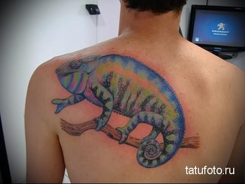 Пресмыкающиеся в татуировке 2343462413