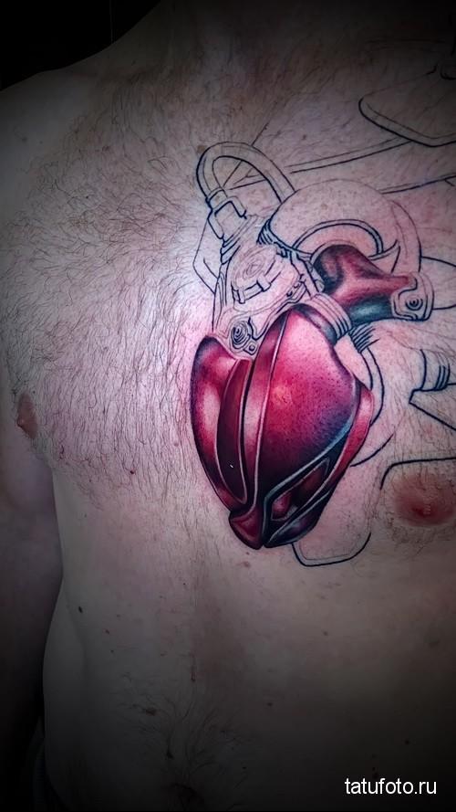 Профессиональные татуировки фото работ 12312312412