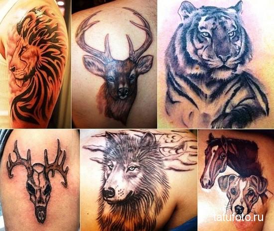 Animal Tattoos for Men 1