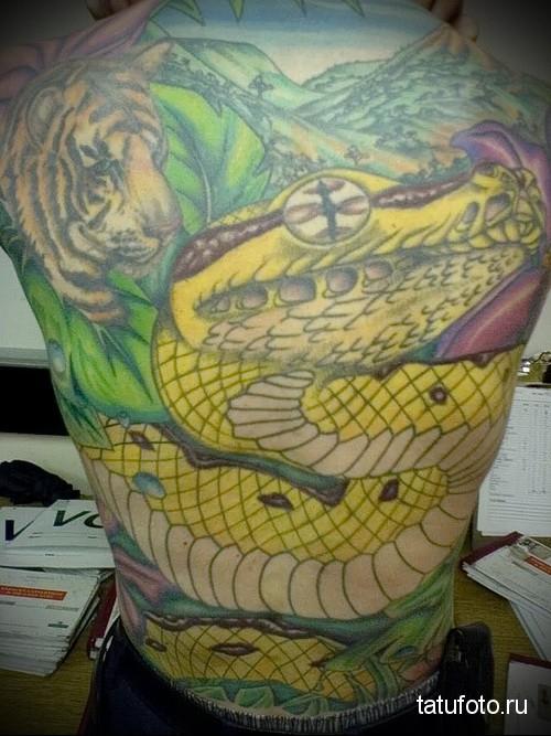 Reptiles in the tattoo 18